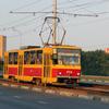 Водитель трамвая покалечила пожилую пассажирку в Курске
