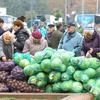 В Курске пройдут сельскохозяйственные ярмарки